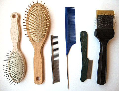 Brushes and Combs for Dog