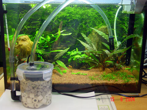 Filter fish tank water level filter free engine image for Well water for fish tank