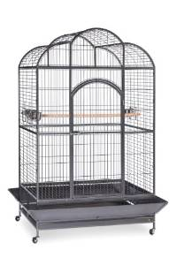 bird cage with curved top