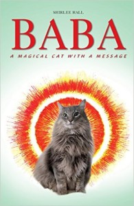 Baba: A Magical Cat with a Message