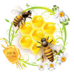 natural holisti bee products by Apipet