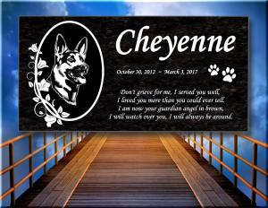 Cheyenne__6x12__1