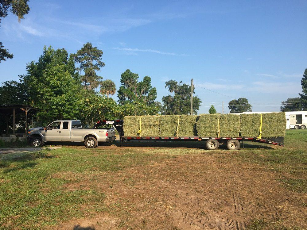3rd Day Hay transportation