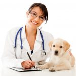 Keep Your Dog Healthy